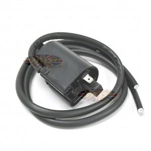12-Volt Dual Lead, Hi-Output Coil, Tri-Spark MAP4692