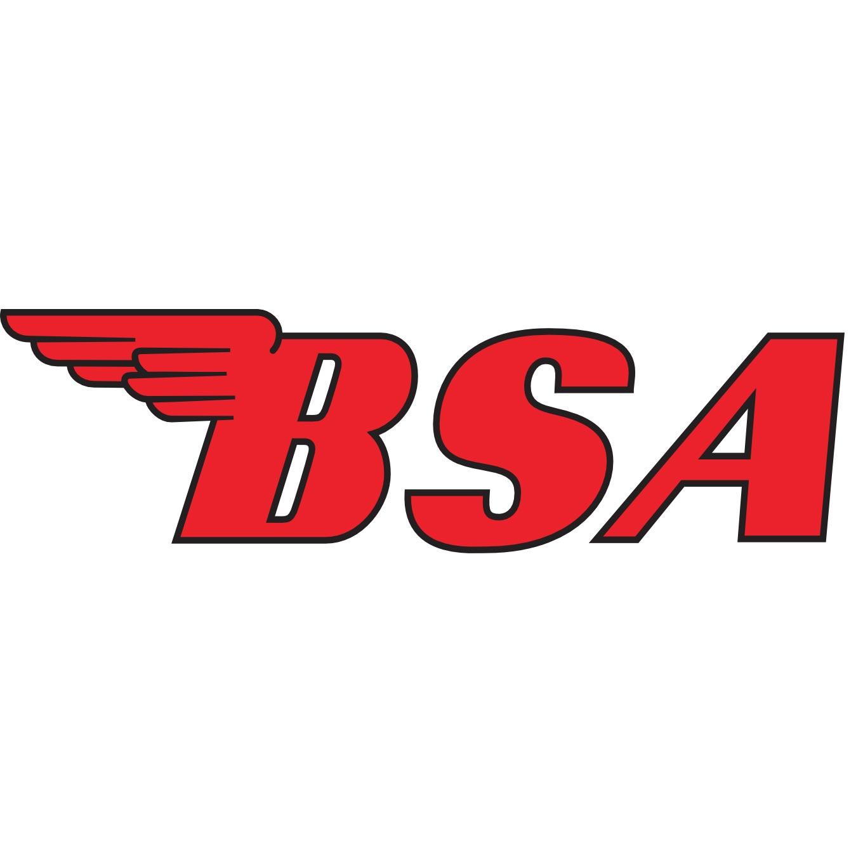 BSA Pistons & Rings