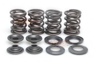 Triumph 650-750 T120RV/TR6RV/T140/TR7 Stock Replacement Valve Spring Kit PM0295